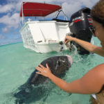 Wet and Wild Aitutaki Cook Islands Boat Charters, Water Taxi, Waterskiing, Wakeboarding.